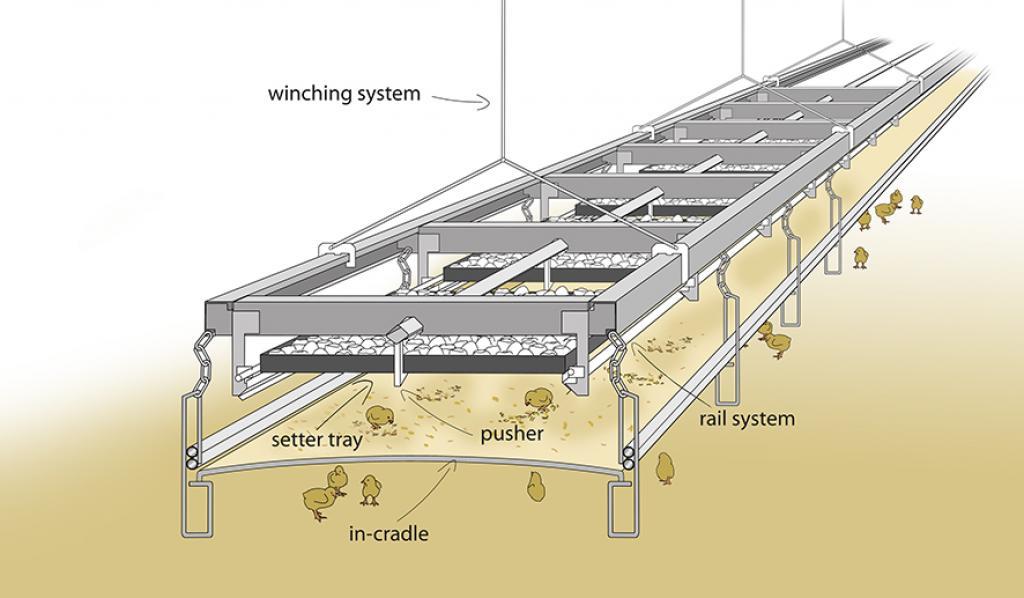 Budowa systemu X-Treck